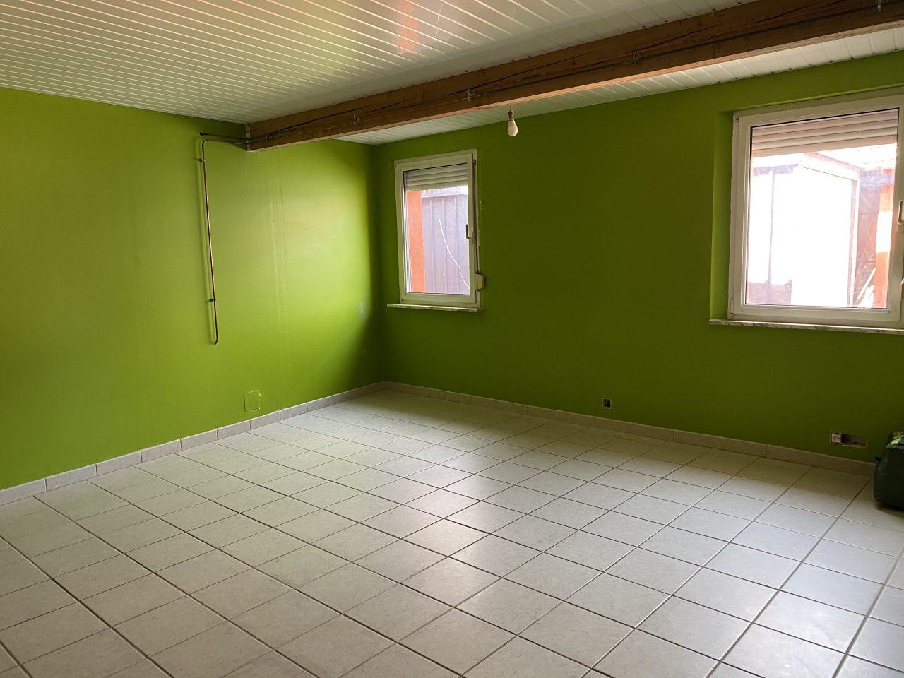 Haguenau, maison 93m2 sur 3,16 ares au calme.