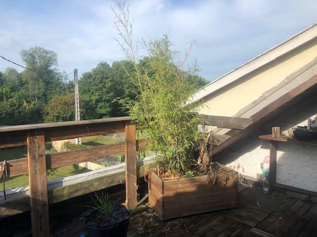 Haguenau, proche gare, F5 104m², garage, terrasse. Vidéo disponible